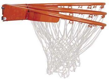 Lifetime Adjustable Basketball Hoop review